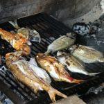 Fisch grillen – wie es richtig geht!