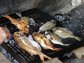 der perfekte Grillfisch