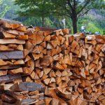 Holzbackofen – welches Holz verwenden?